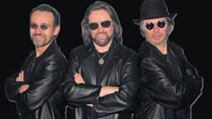 Almost The Bee Gees
