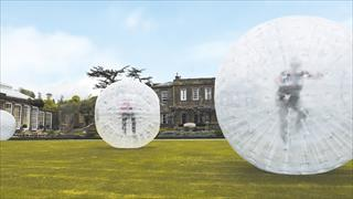 Guests rolling on the green in zorb balls